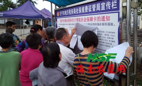 新中农场为3988名职工办理社会保障卡