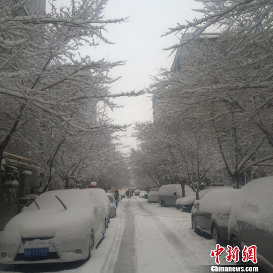 乌鲁木齐持续降雪超过30小时积雪厚度超20厘米