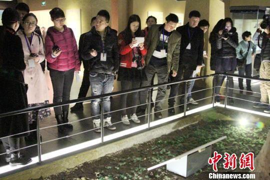 """""""丝路寻梦?人文陕西""""采访活动走进宝鸡青铜器博物院。 记者 田进 摄"""