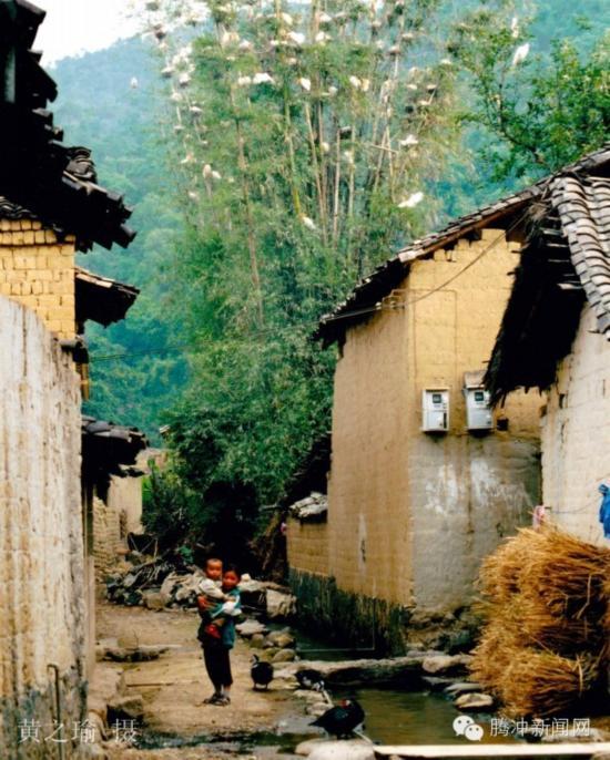 这里,云南省冠名第二的地下泉  坝派巨泉,白鹭之家  羡多,腾冲第