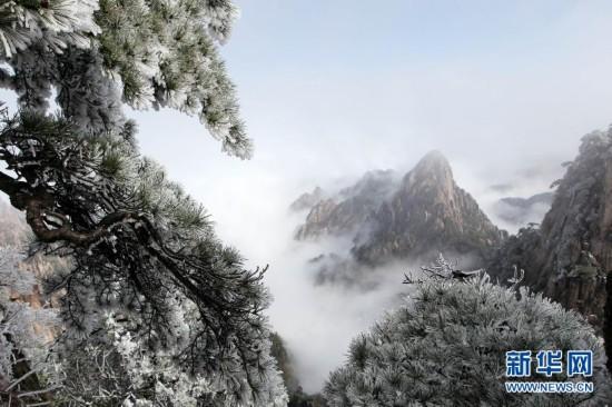 #(生态)(2)缤纷四月天 春雪落黄山