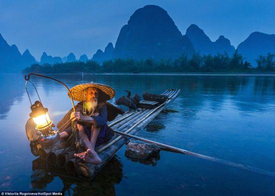 俄摄影师镜头下的中国鸬鹚捕鱼者