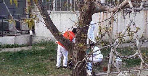 中国传媒大学一名女生坠楼身亡 原因不明(图)