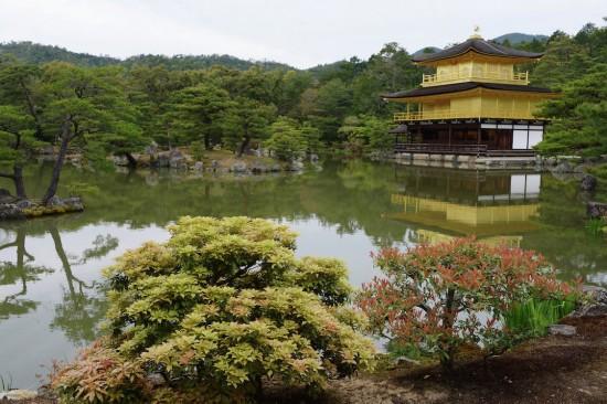 日本京都是世界上最风景如画的地方之一,这是一个留学的好去处。