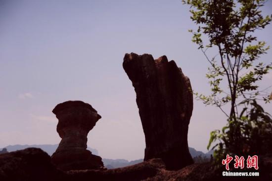 重庆酉阳发现近千亩红石林【7】