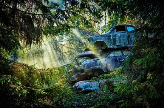 德摄影师拍摄古董汽车德国艺术家迪特尔·克莱因环游世界各地发现遗弃在自然界中的经典老车。