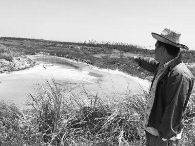 文昌村民:虾场排放海水把农田污染 虾场回应