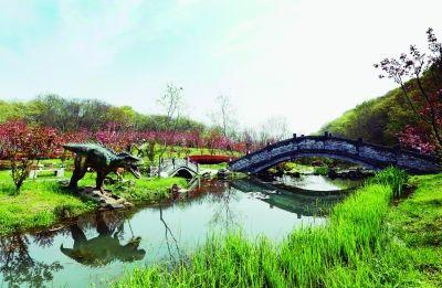 宁波南京樱花谷里现30多只恐龙别有情趣房间情趣最的江宁图片