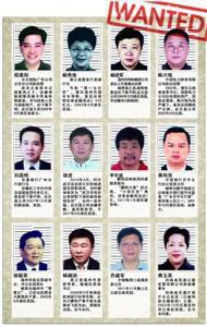 中文版红色通缉令上部分外逃人员信息整理/吴飞