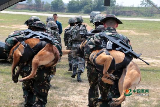 解放军特种兵身背军犬一起滑降