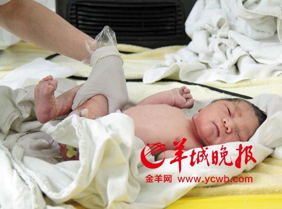 """截至2014年11月,东莞市78.64%符合条件的家庭提出""""单独二孩""""申请,一小波""""生育高峰""""即将杀到"""