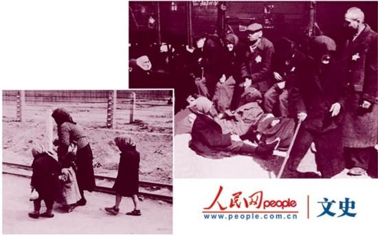 犹太人经商之道视频_法西斯的罪恶屠杀犹太人组图