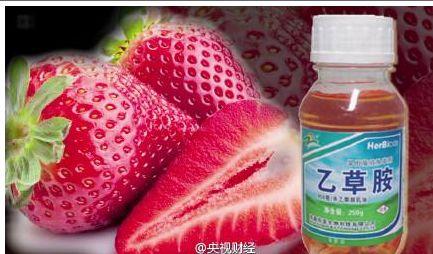 央视记者买8份草莓经检测均含致癌农药