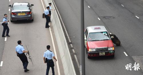 野猪大闹香港仔近5小时连环冲撞车辆险象环生