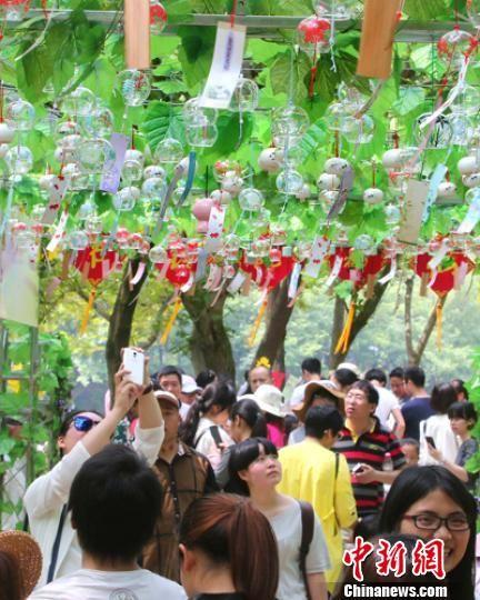浙江仙都挂出上千只风铃遭游客哄抢一空景区提前收场