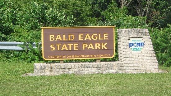 美国男子公园采蘑菇 意外捡到逾6万美元巨款