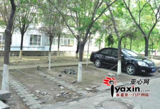 乌鲁木齐市一小区内车主在绿化带上自建停车位(图)图片