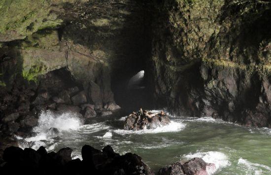 国俄勒冈州佛罗伦斯 海狮洞由一系列的海蚀洞组成,为世界上最长的