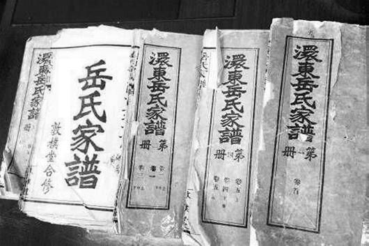 岳姓的人口_岳氏家族共有多少人(2)