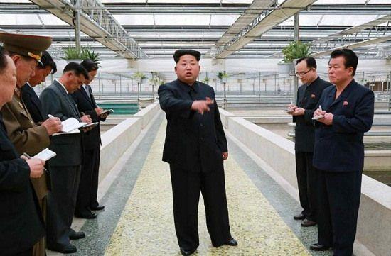 金正恩视察甲鱼养殖厂罕见动怒提批评称让人寒心
