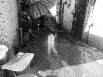 污水管损坏脏水横流 居民:回家得趟过臭水