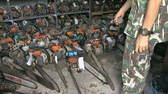 """对面对中国""""红木热""""的任何国家来说,非法采伐和木材走私造成的金钱刺激都带来严重的治理挑战,图为缅甸执法人员清查走私红木。"""