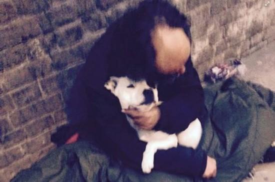 【环球网综合报道】据英国《镜报》5月26日报道,近日,英国伦敦桥附近的流浪汉迈克尔(Michael)与他的爱狗蜜糖(Treacle)重聚,场面温馨感人。 迈克尔认为,一名假冒警察偷走了他的爱狗。认识迈克尔的人们称,他全身上下邋里邋遢,生活一团糟,要是没了爱狗都不知道怎么办。为了帮助他,人们便在网上发起了寻找蜜糖小狗活动,大家纷纷转发蜜糖与迈克尔在一起的照片,希望能找回迈克尔的心灵寄托。 值得庆幸的是,小狗蜜糖在近日回到迈克尔身边。他们在伦敦桥外面重聚,再次见到爱狗的迈克尔开心得手舞足蹈,激