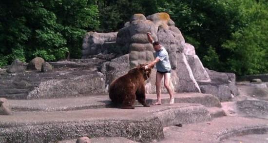 波兰男子跳入动物园暴打母熊后逃走(图)