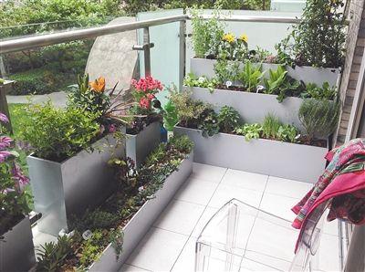 家居常识 阳台种花 注意防水