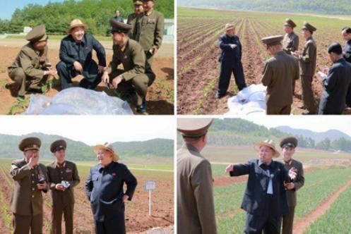 金正恩视察了朝鲜人民军综合研究农场。(来源:朝鲜《劳动新闻》)