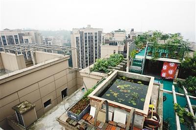 重庆一小区内乱搭建严重 23层楼顶建游泳池(图)