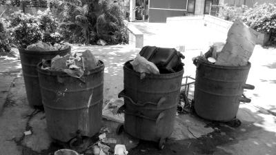 居民:生活垃圾总量大种类多 不知该如何归类