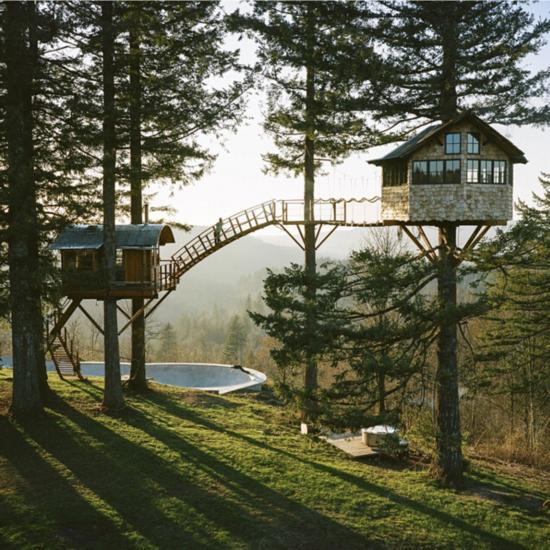 图为Huntington和一群密友在华盛顿哥伦比亚河谷的冷杉林中建造的树屋 -- 配备滑板公园和热水浴缸。