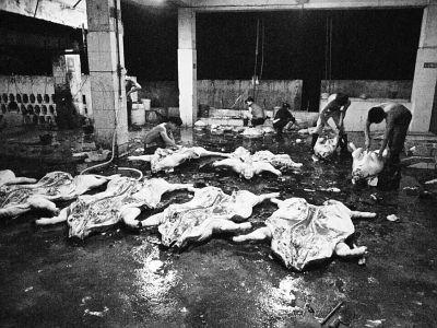 記者走訪:萬寧部分屠宰場沒有檢疫人員上班