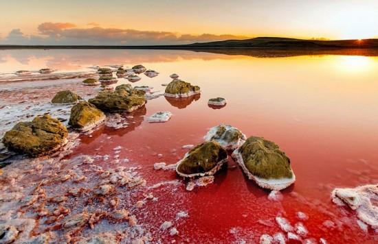 如梦似幻!乌克兰梦幻粉色盐湖美景令人窒息