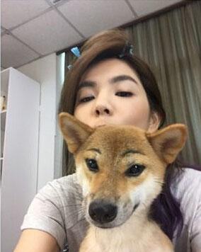 Ella为爱犬画眉毛遭调侃:你这样它同意了吗?