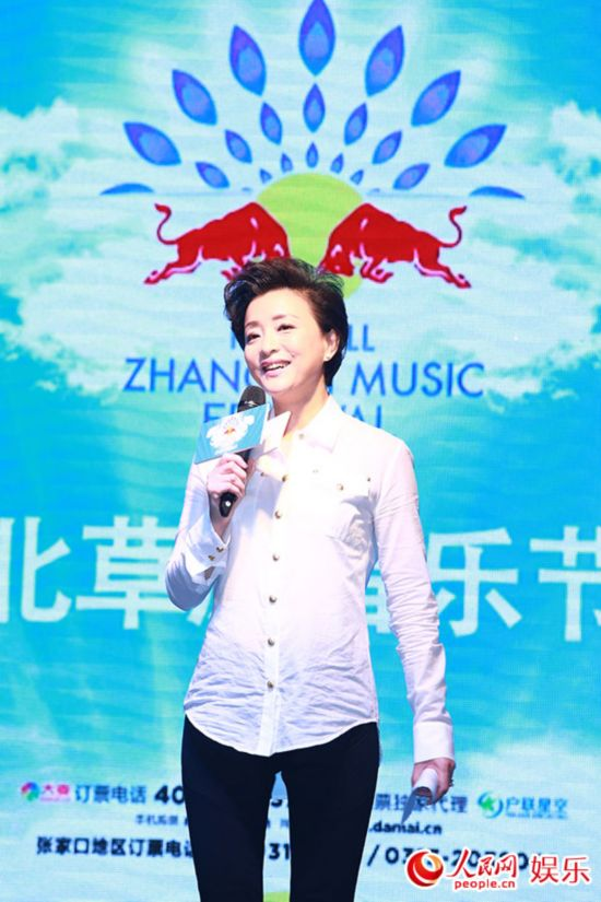 张北音乐节发布会在京举行 杨澜等知名人士出席