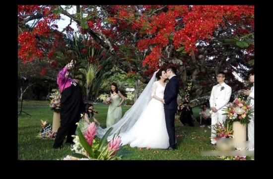 陆川与胡蝶夏威夷完婚 传统婚礼低调私密[高清大图]