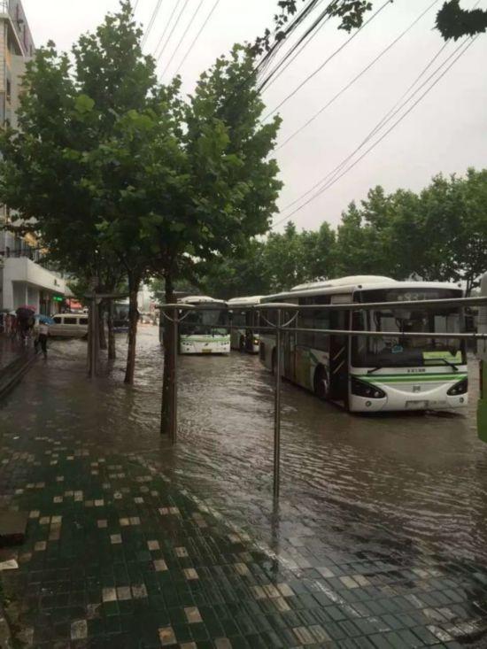 上海暴雨牌照_上海暴雨积水严重 网友:法海,快放了许仙(图)