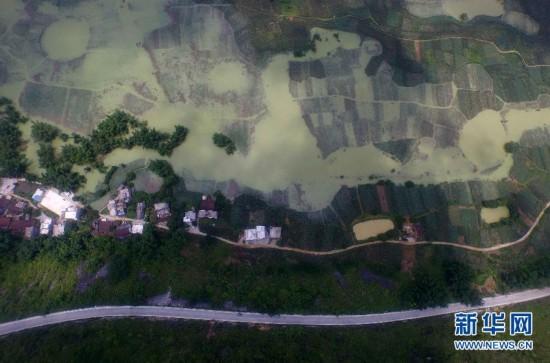 (生态)(1)广西洪涝灾害已造成86.46万人受灾 8人死亡