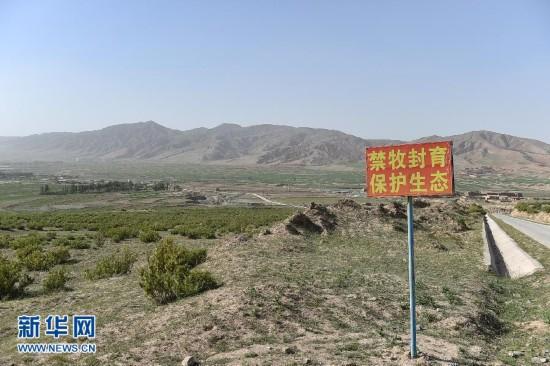 宁夏防治荒漠化 沙化土地连续20年持续减少
