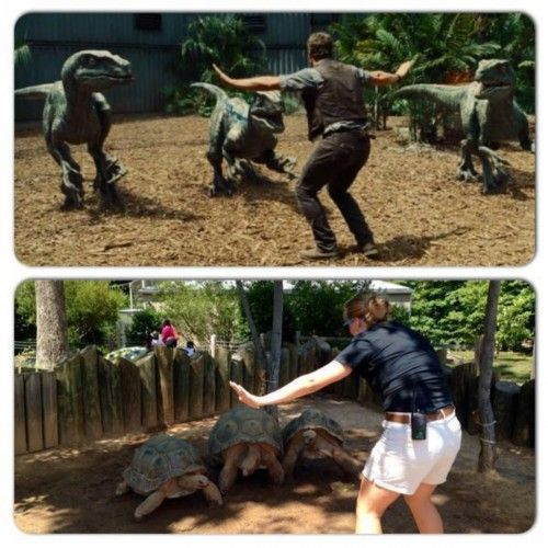 《侏罗纪世界》引发动物园模仿热潮--福建频道--人民