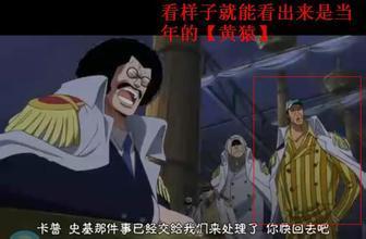 海贼王漫画782话:明哥被捕藤虎漫画下跪废除24食物链大将图片