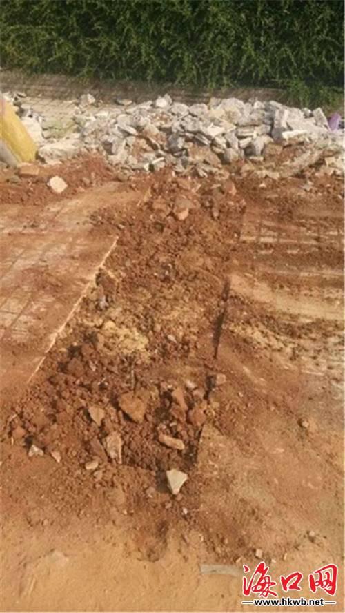 金牛岭公园前道路窟窿续:土坑填平市民点赞