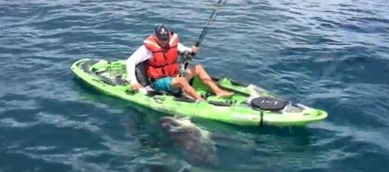男子乘獨木舟釣上鯊魚船被掀翻場面驚險(圖)