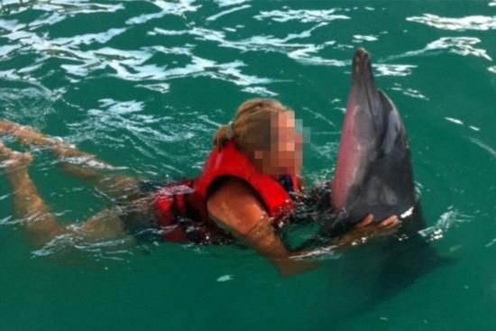 印尼巴厘岛一酒店泳池氯超标致海豚几乎失明【3】