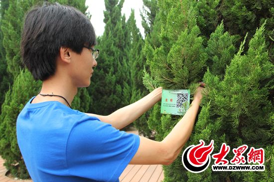 滨州树木有了 身份证 扫一扫更多信息 跑出来