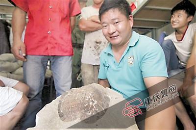 男子工地上發現硬石頭 疑似為侏羅紀龜化石(圖)