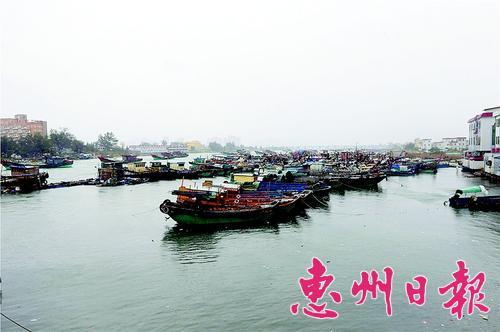 渔船停靠在港口避风港。
