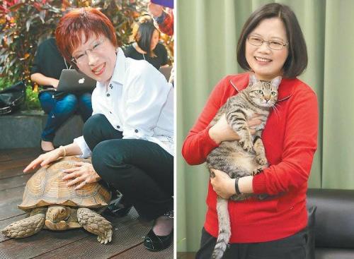 """洪秀柱(左)收养""""龟龟"""",蔡英文(右)收养流浪猫""""蔡想想""""。(图:台湾《联合报》)"""